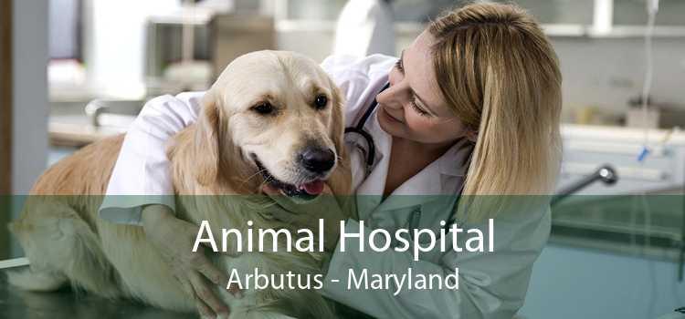 Animal Hospital Arbutus - Maryland