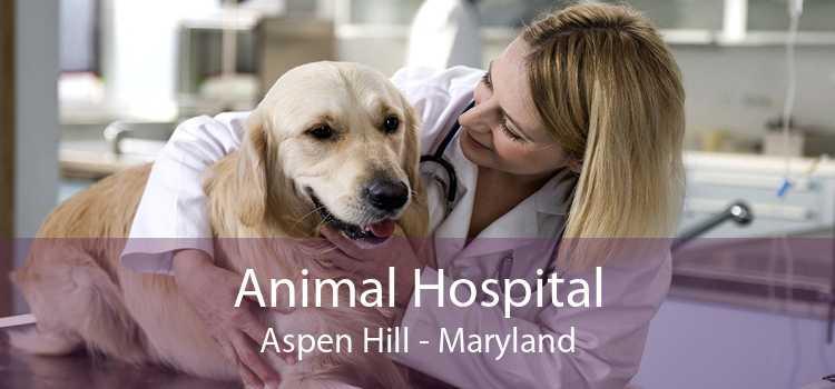 Animal Hospital Aspen Hill - Maryland