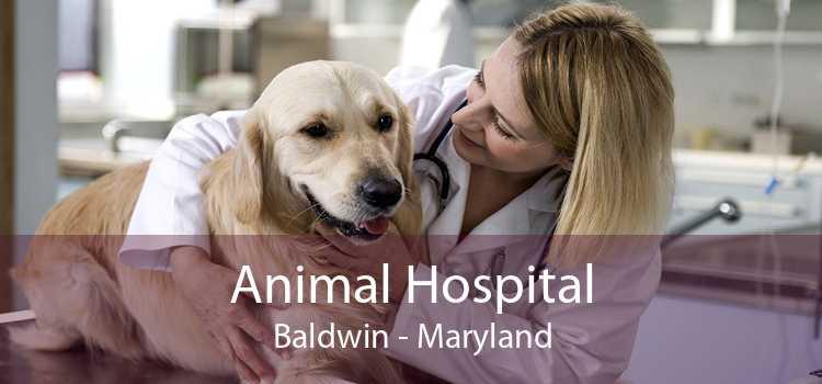 Animal Hospital Baldwin - Maryland