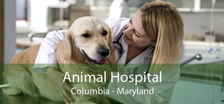 Animal Hospital Columbia - Maryland