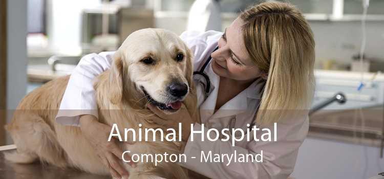 Animal Hospital Compton - Maryland