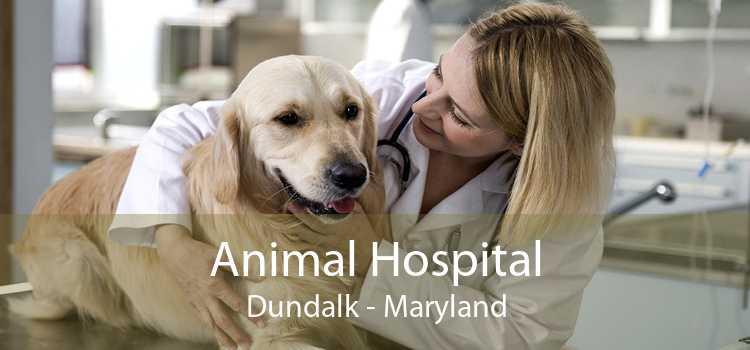 Animal Hospital Dundalk - Maryland