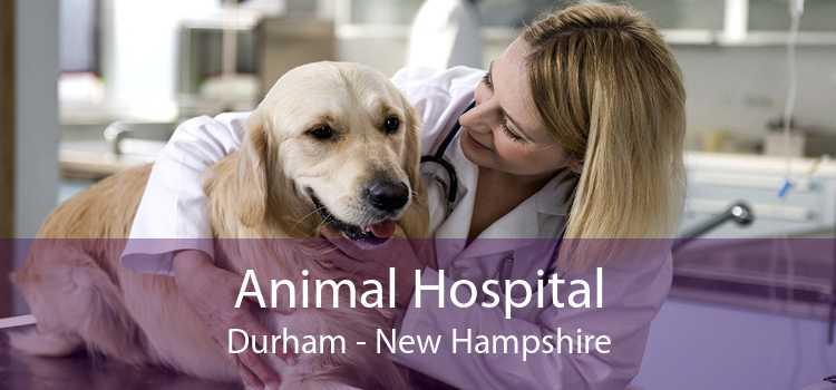 Animal Hospital Durham - New Hampshire