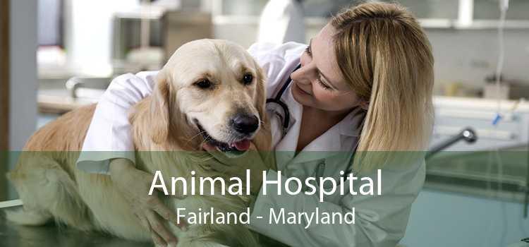 Animal Hospital Fairland - Maryland