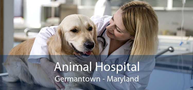 Animal Hospital Germantown - Maryland