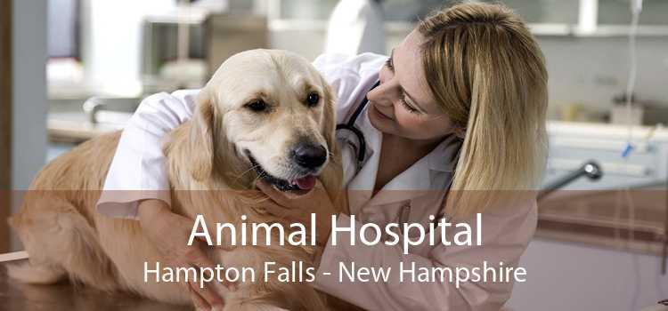 Animal Hospital Hampton Falls - New Hampshire