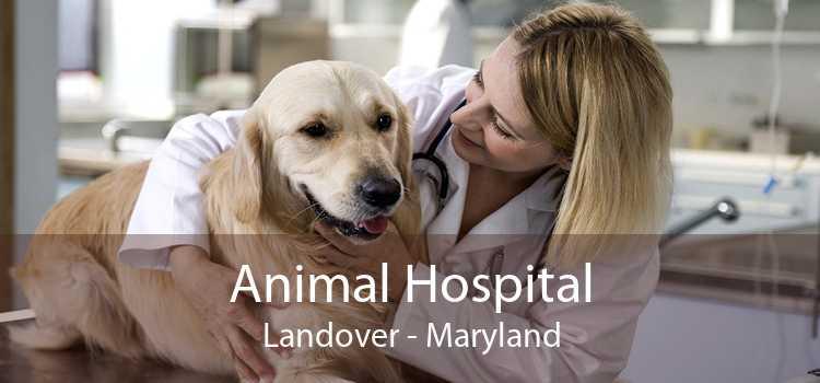 Animal Hospital Landover - Maryland