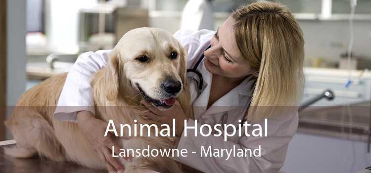 Animal Hospital Lansdowne - Maryland