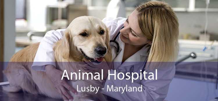 Animal Hospital Lusby - Maryland