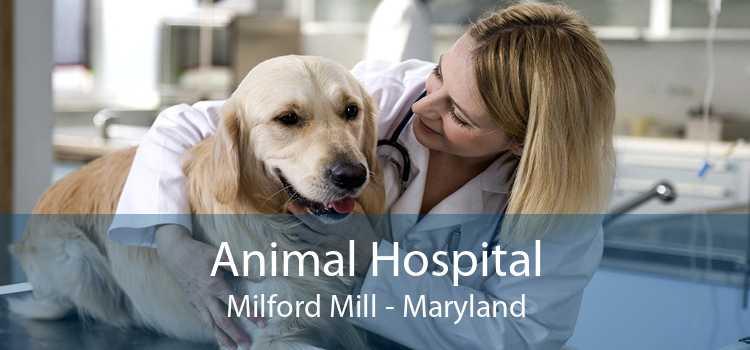 Animal Hospital Milford Mill - Maryland