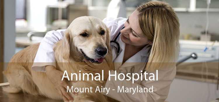 Animal Hospital Mount Airy - Maryland