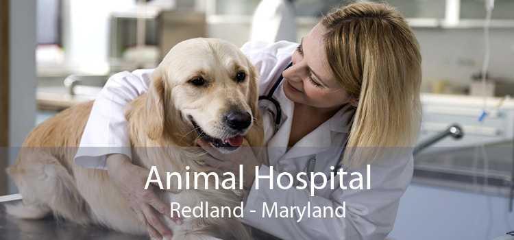 Animal Hospital Redland - Maryland