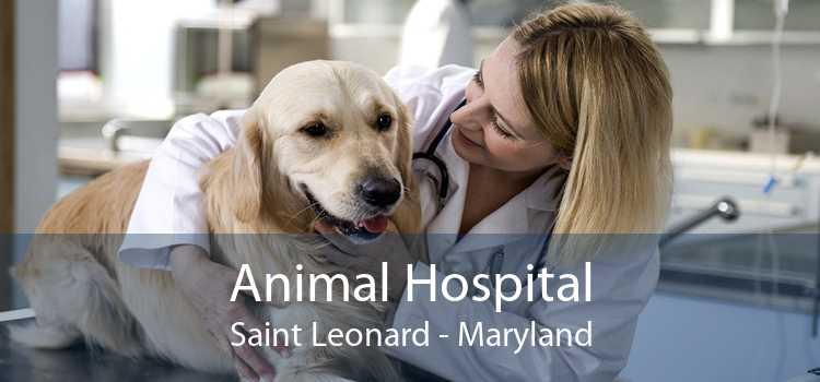 Animal Hospital Saint Leonard - Maryland
