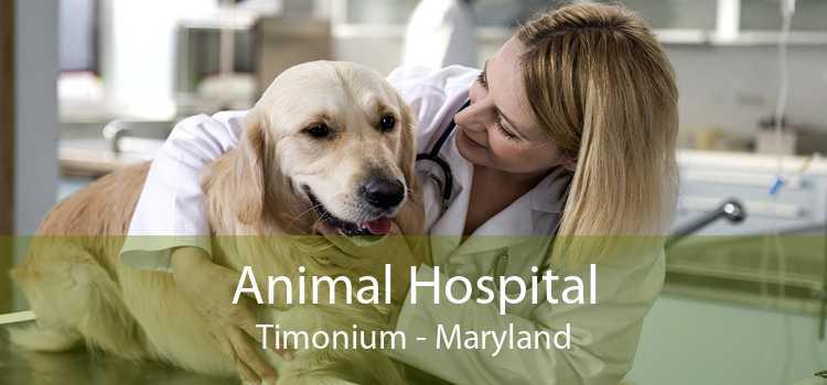 Animal Hospital Timonium - Maryland