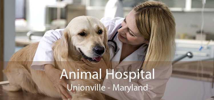 Animal Hospital Unionville - Maryland