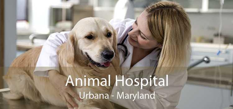 Animal Hospital Urbana - Maryland