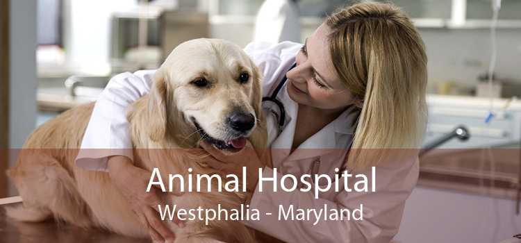 Animal Hospital Westphalia - Maryland