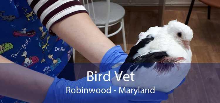 Bird Vet Robinwood - Maryland