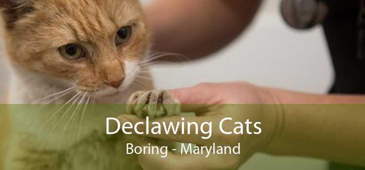 Declawing Cats Boring - Maryland