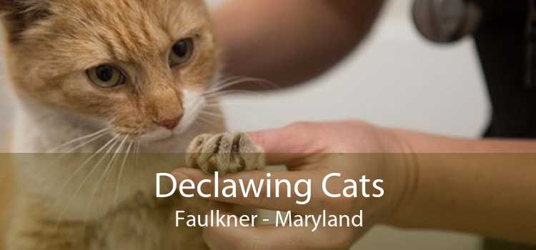 Declawing Cats Faulkner - Maryland