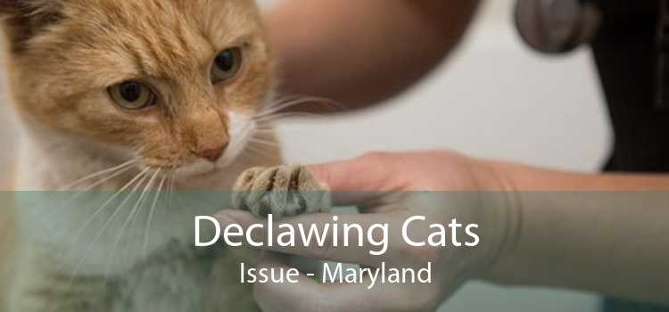 Declawing Cats Issue - Maryland