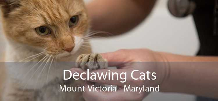 Declawing Cats Mount Victoria - Maryland
