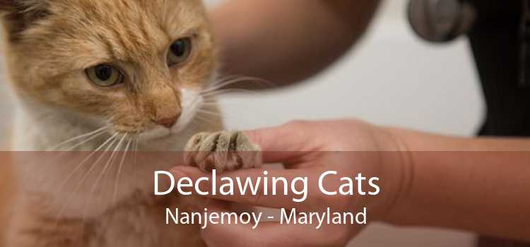 Declawing Cats Nanjemoy - Maryland