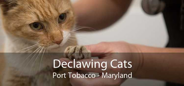 Declawing Cats Port Tobacco - Maryland