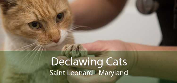 Declawing Cats Saint Leonard - Maryland