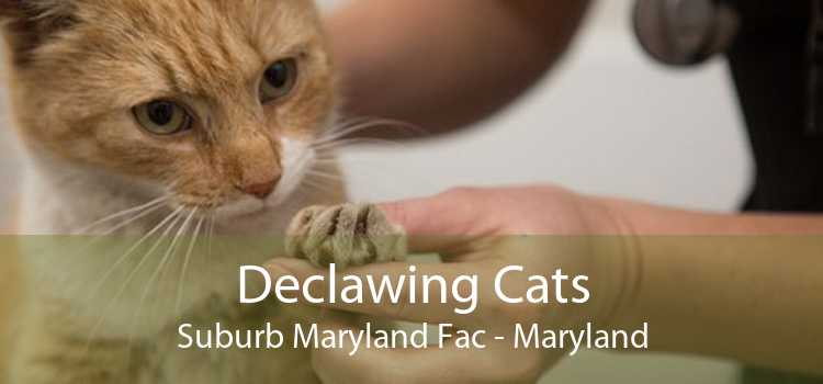 Declawing Cats Suburb Maryland Fac - Maryland