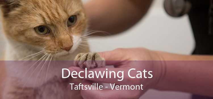 Declawing Cats Taftsville - Vermont