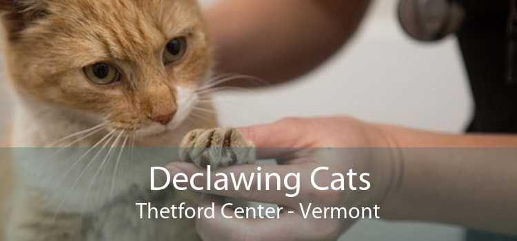 Declawing Cats Thetford Center - Vermont
