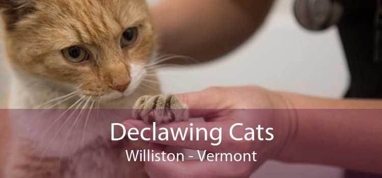 Declawing Cats Williston - Vermont