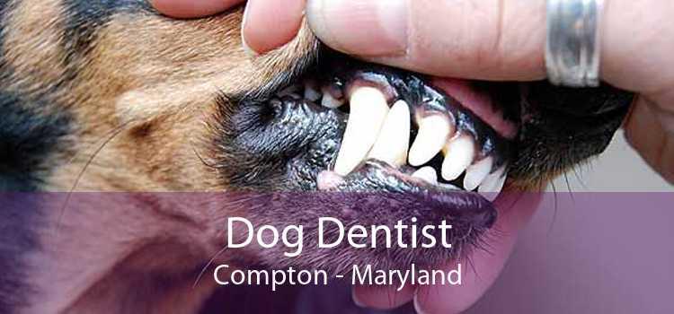 Dog Dentist Compton - Maryland