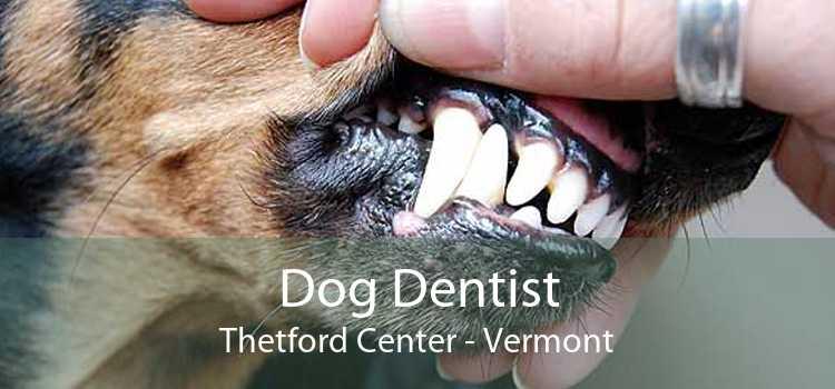 Dog Dentist Thetford Center - Vermont