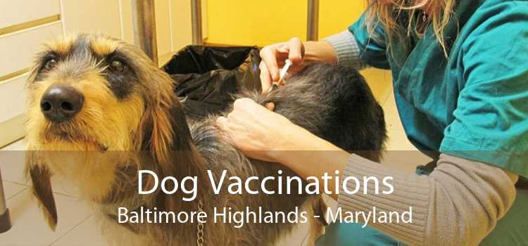 Dog Vaccinations Baltimore Highlands - Maryland