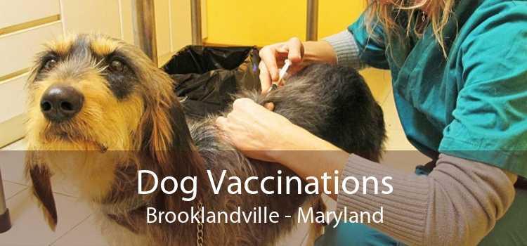 Dog Vaccinations Brooklandville - Maryland