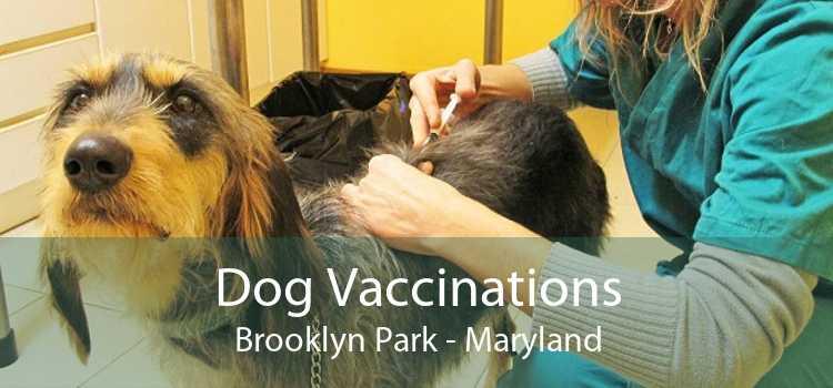 Dog Vaccinations Brooklyn Park - Maryland