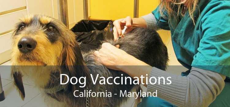 Dog Vaccinations California - Maryland