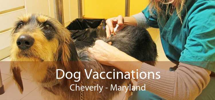 Dog Vaccinations Cheverly - Maryland