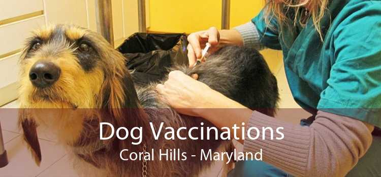 Dog Vaccinations Coral Hills - Maryland