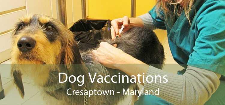 Dog Vaccinations Cresaptown - Maryland