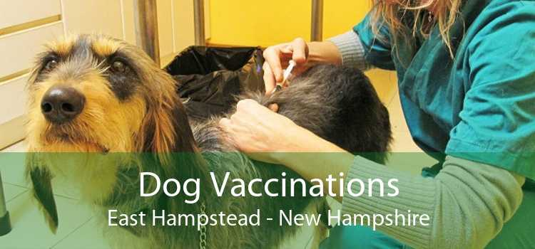 Dog Vaccinations East Hampstead - New Hampshire