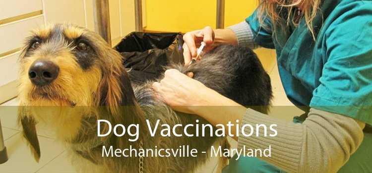 Dog Vaccinations Mechanicsville - Maryland