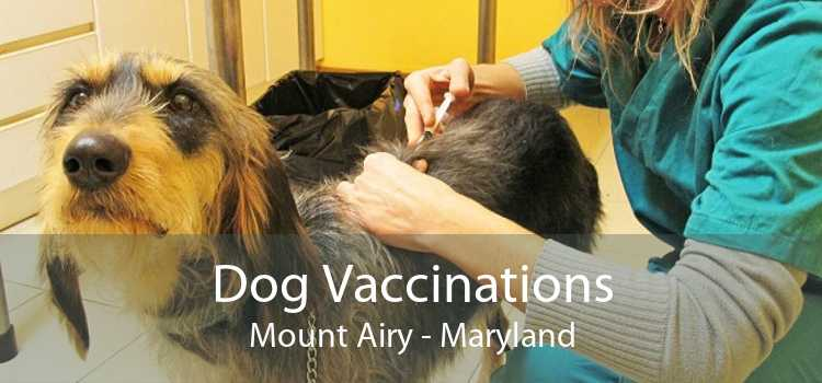 Dog Vaccinations Mount Airy - Maryland