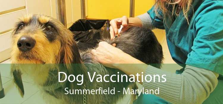 Dog Vaccinations Summerfield - Maryland