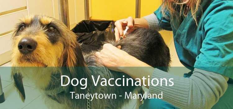 Dog Vaccinations Taneytown - Maryland