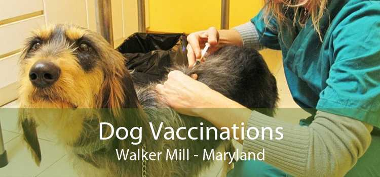 Dog Vaccinations Walker Mill - Maryland