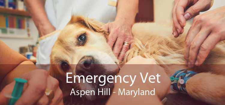 Emergency Vet Aspen Hill - Maryland