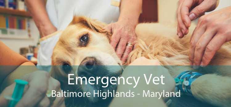 Emergency Vet Baltimore Highlands - Maryland